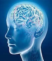پاورپوینت تعریف هوش عاطفی یا هیجانی، pptx، در 98 اسلاید