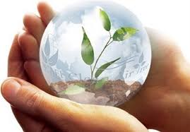 دانلود تحقیق توسعه فرهنگ حفظ محیط زیست